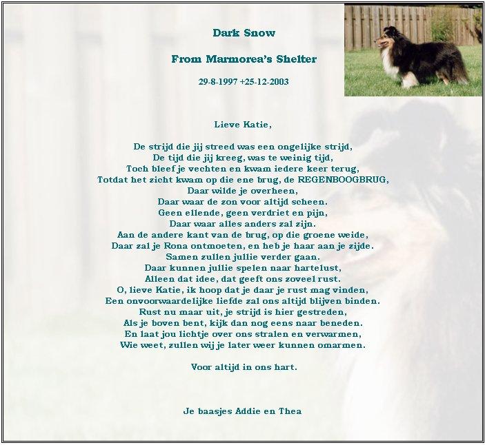 in-memoriam-katie-25-12-2003